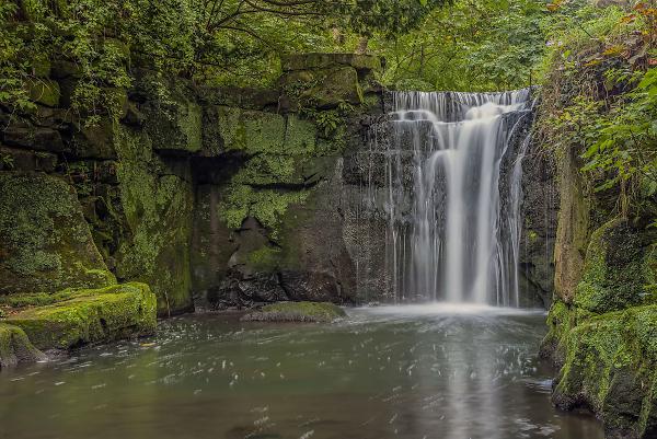 jesmond-dene-waterfall--newcastle.jpg