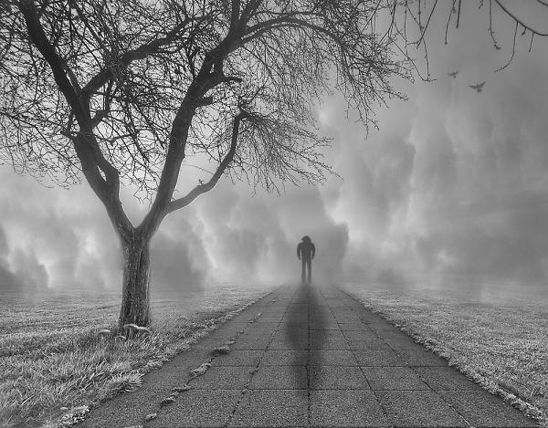 the-fog2.jpg