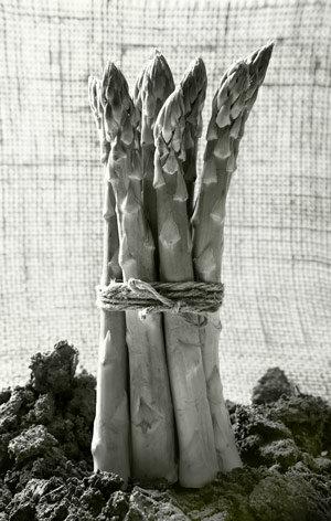 asparagus-300px.jpg
