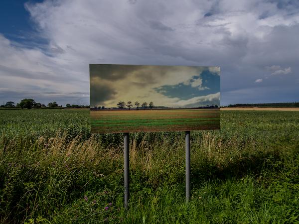 photo-in-landscape-1.jpg