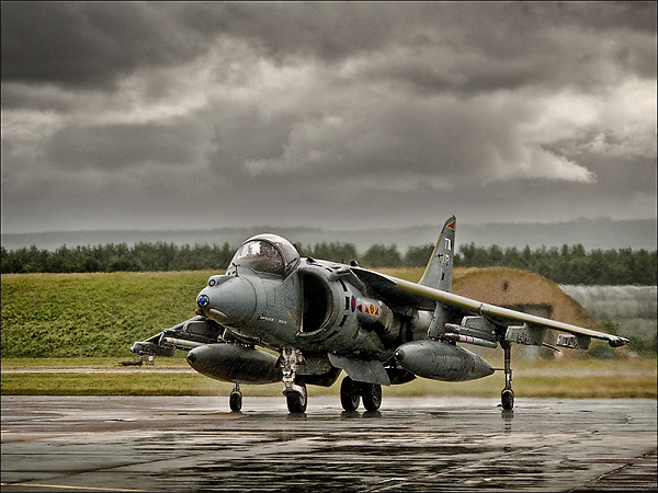 harrier-in-the-rain-copy.jpg