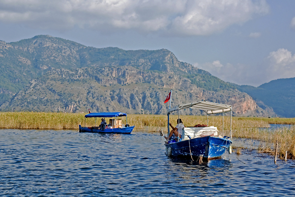 dalyan-river-turtle-beach81.jpg