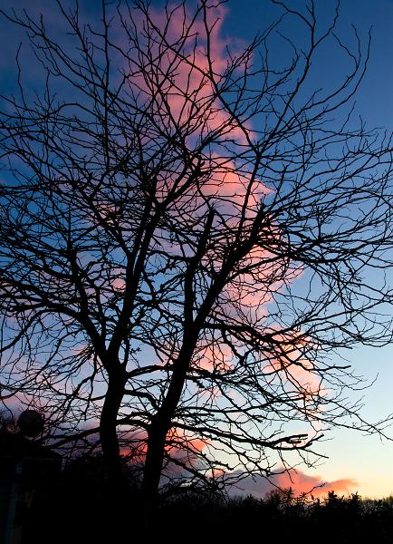 sky-blue-pink.jpg