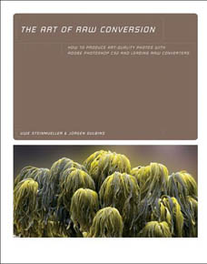 The Art Of RAW Conversion