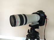 Classified : Canon EF100-400 L IS USM mk 1
