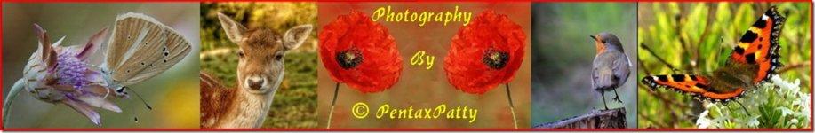 pentaxpatty