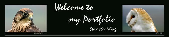 SteveMoulding