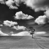 Monochrome photography exhibition