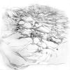 Laura Nicholson's Drawing Beyond that Frame
