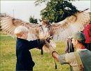 Eagle Owl Experience