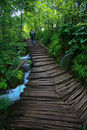 Walkways at Plitvice Lakes National Park