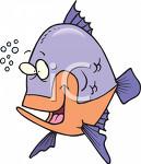 smackmyfish
