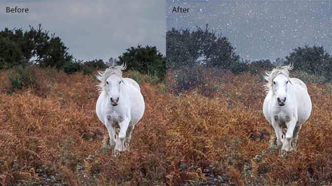 LandscapePro v3 before/after