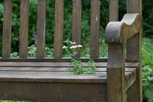 Garden Seat by Linda
