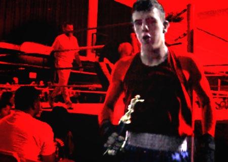 Boxer by centur