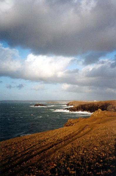 Cornish Coastline by heidi