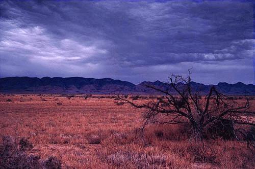 Flinders Ranges by J-P