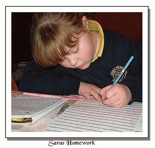 Sara\'s Homework by Mavis