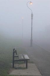 Misty Seat