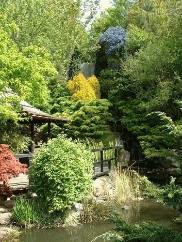 Japanese Garden in Cornwall by alex.allen