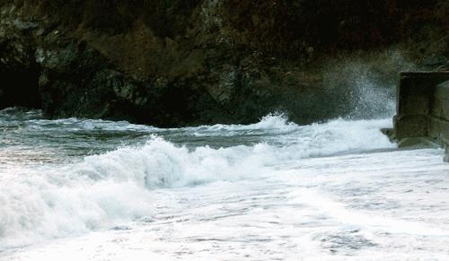 On the seashore by Saxon Marsh