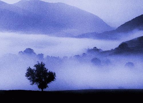 Lake District II by J-P