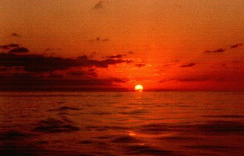 Atlantic Sunset by Saxon Marsh