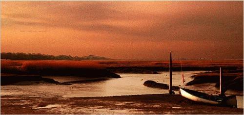 norfolk creek at dusk by malleader