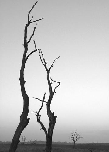 Iken Cliff by ealdous