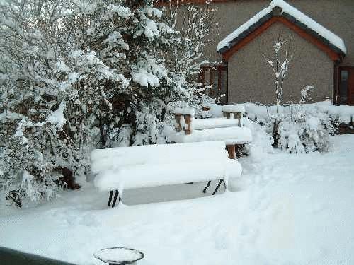 Snow End by kelkiwi