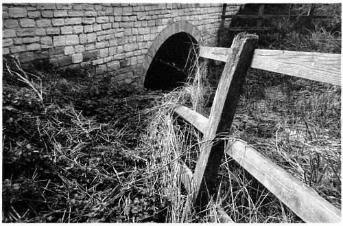 Fence by edz2001