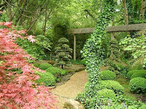 Japanese garden by alex.allen