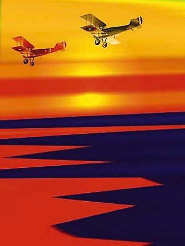 Sunset flight by peterkent