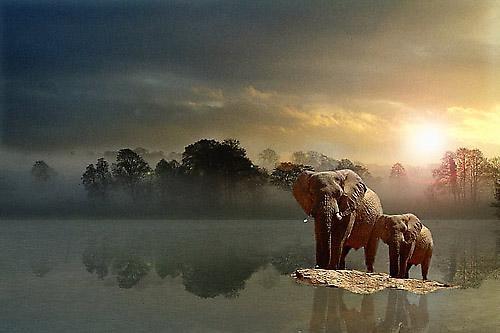 Dawn by peterkent