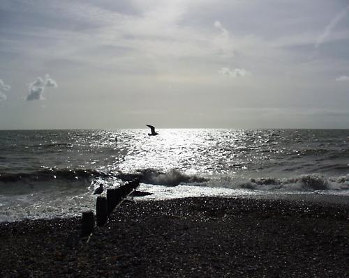 Worthing beach by atohire
