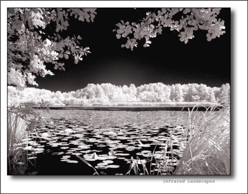 Infrared landscapes by tttfoto