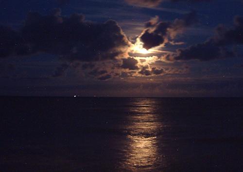 Moonlit sea by wendy9