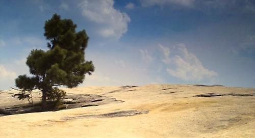 Stone Mountain by paul daglish