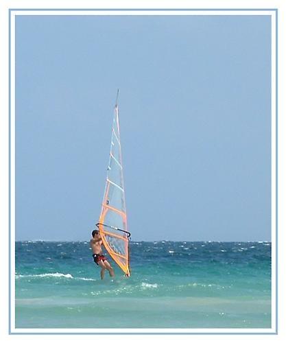 Wind Surfer by hudster