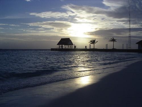 Paradise! by tj