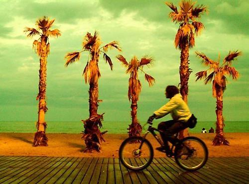 Barcelona beach by niamh