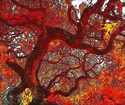 Autumn Fantasy by mrjes