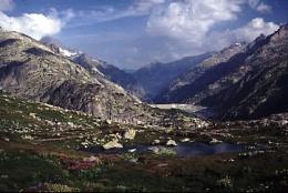 Grimsel Pass Switzerland