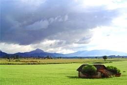 Green... near Quetzaltenango Guatemala