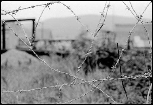 Barbed wire 1 by peterh