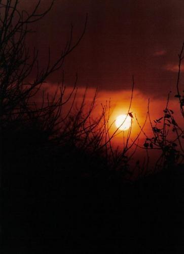 Cheshire Sunset by graymw