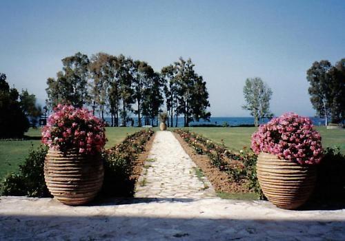 Corfu Planters by graymw