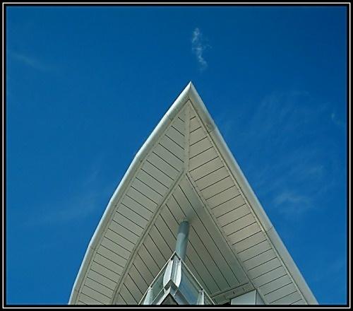 Sky Shark by guzman
