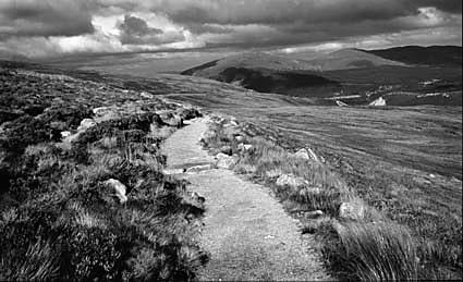 Mountain Track by gpwalton