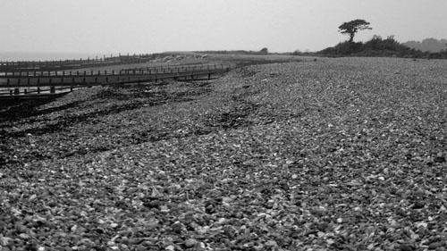 Beach by gazleton